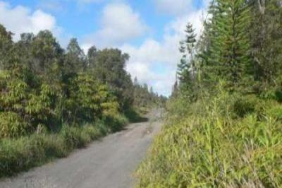 VacationsFRBO Mountain View Vacation Rentals Property ID 26064 Hawaiian Rainforest 3 acre